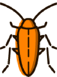 Best Cockroaches Pest Control